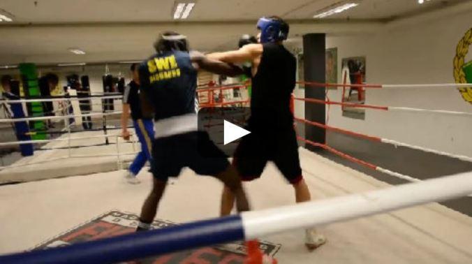 Havnaa i sparringsmatch mot nordisk mester